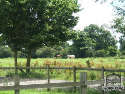 Lovely Rural scene from Childrens play area [284]